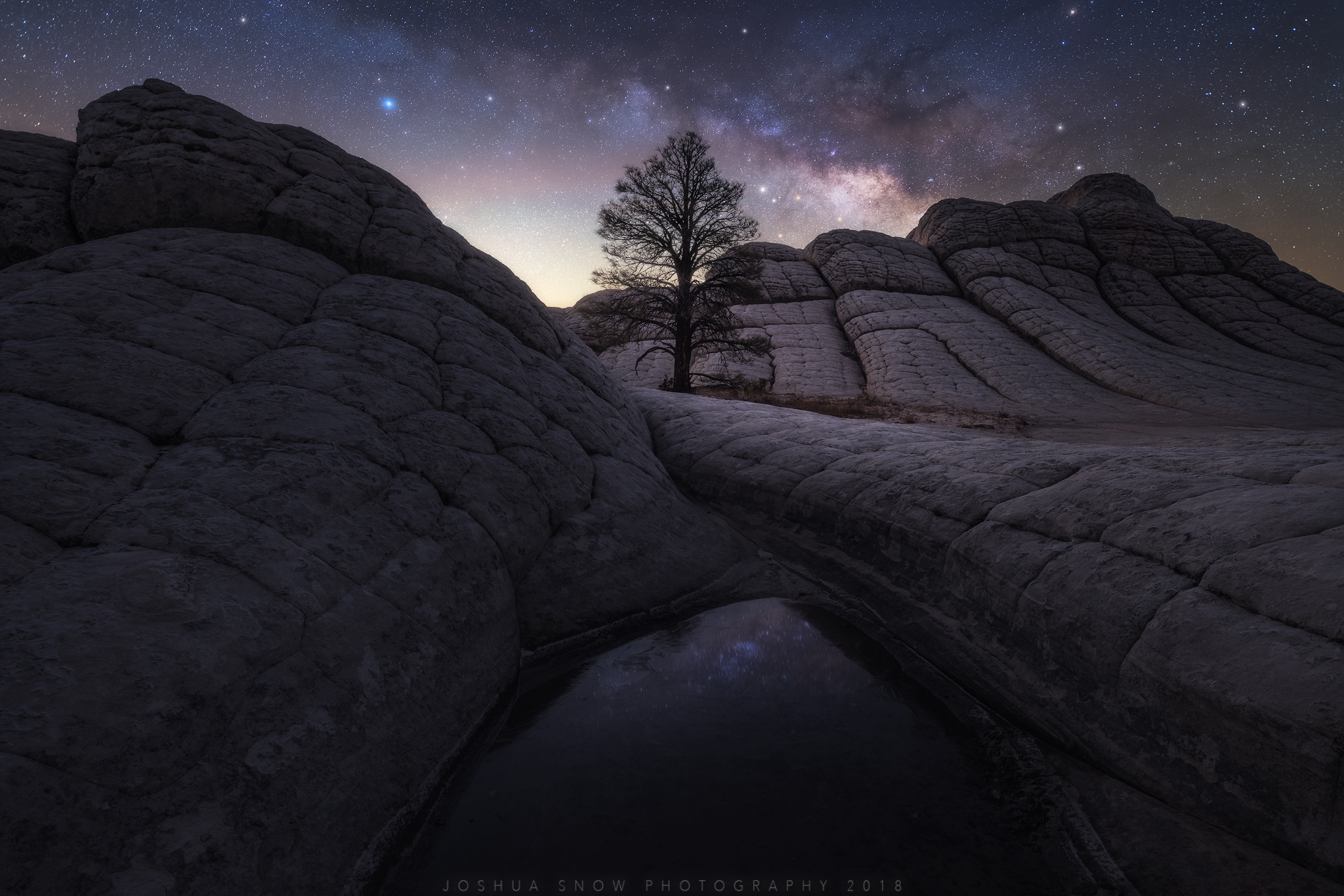 White Pocket Tree Milky Way copy